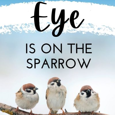 His Eye is on the Sparrow, So Know He Watches You