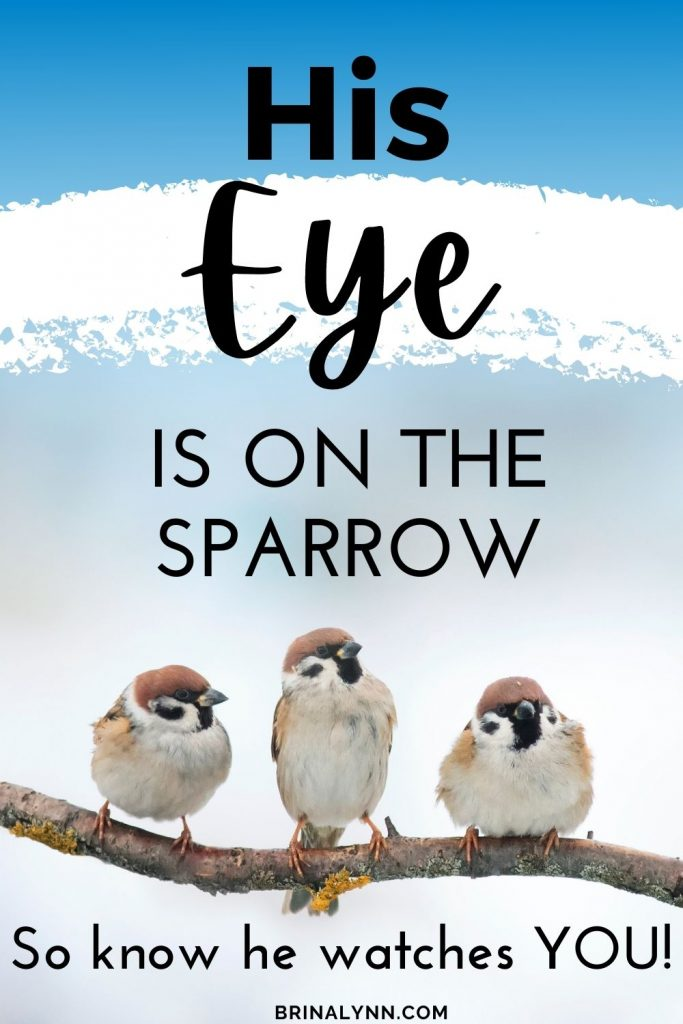 His Eye is on the Sparrow, So Know He Watches You!